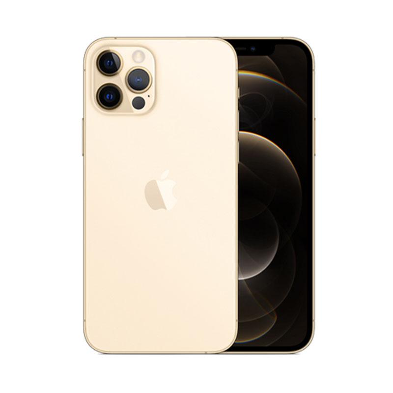 Điện thoại iPhone 12 Pro Max 128GB Gold MGD93VN/A