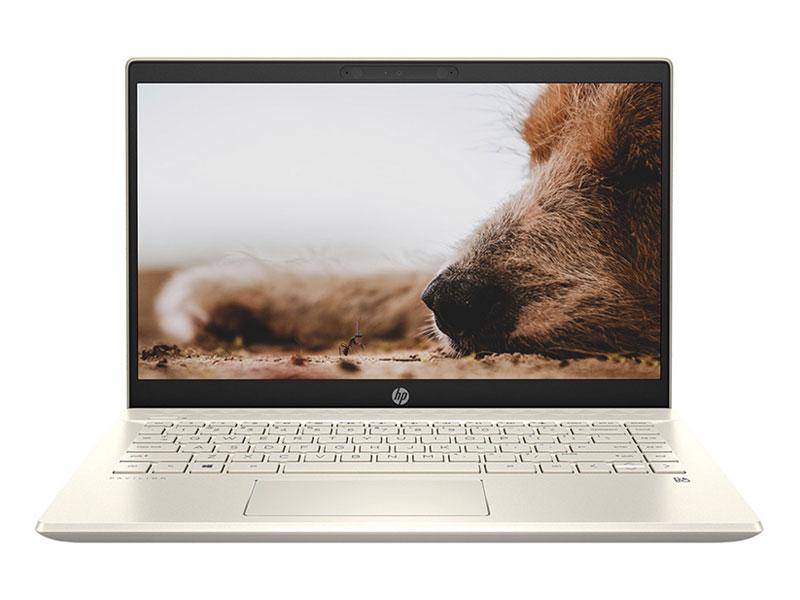 Laptop HP Pavilion 14-dv0534TU 4P5G3PA
